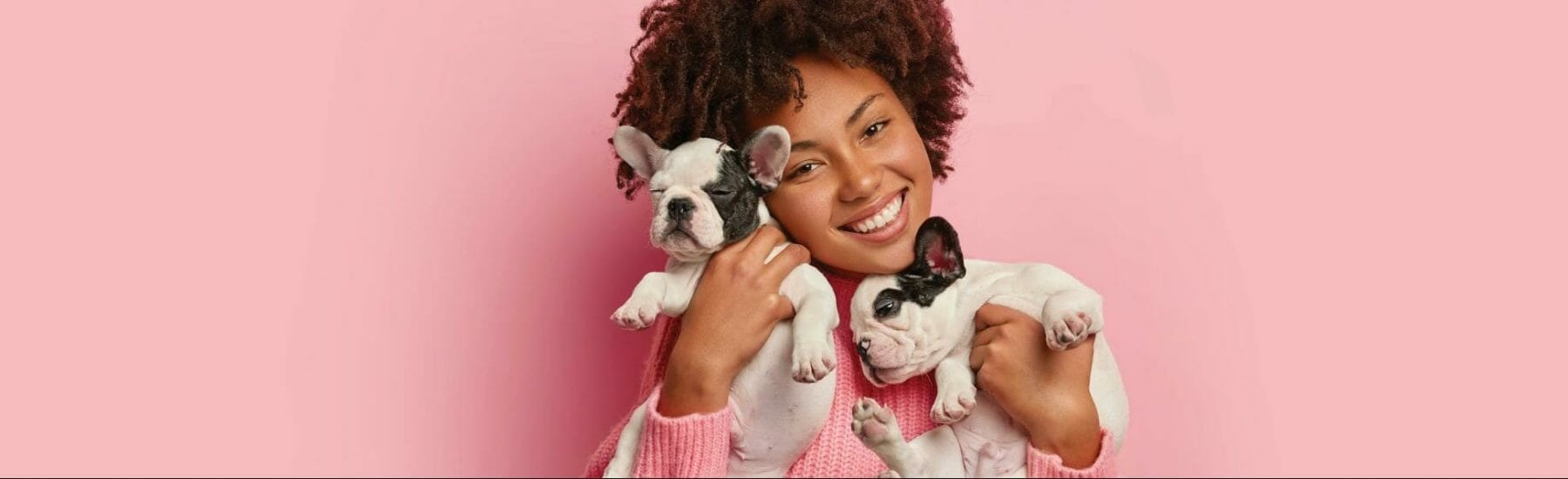 Woman holding two dogs against a pink background